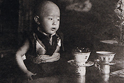 [very young monk with shaved head stands at table with cups]